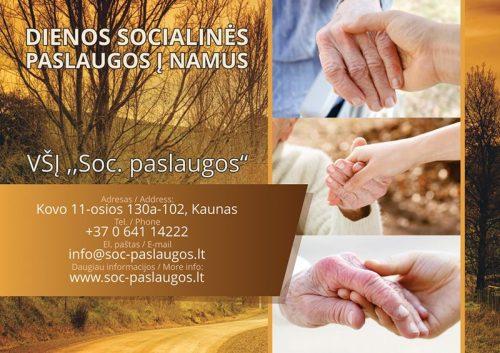 Dienos socialinės priežiūros paslaugos Lietuvoje