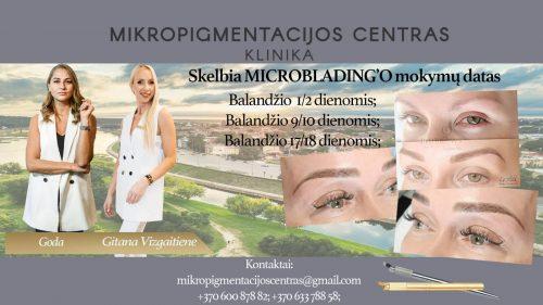 Microblading mokymai Kaune
