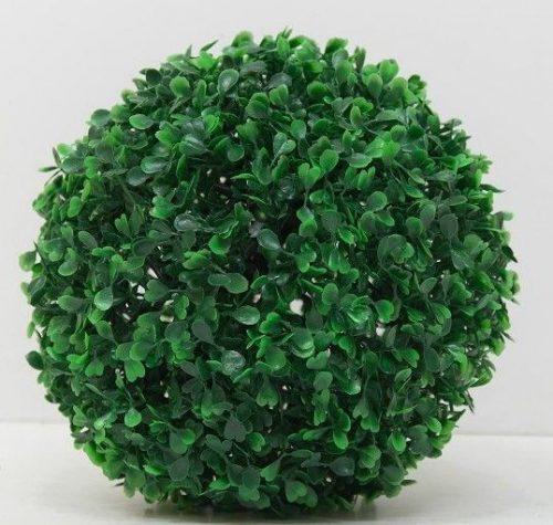 Buksmedis dekoratyvinė gėlė – rutulio formos krūmas